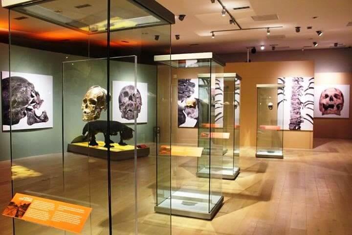 Informações sobre o Museu Maya em Cancún