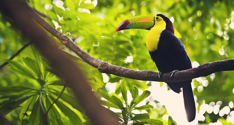 Parque Nacional de Isla Contoy em Cancún