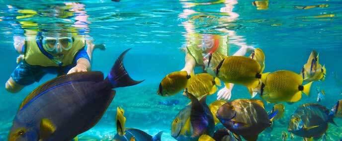 Atração mergulho no Parque Chankanaab Beach Adventure Park em Cancún