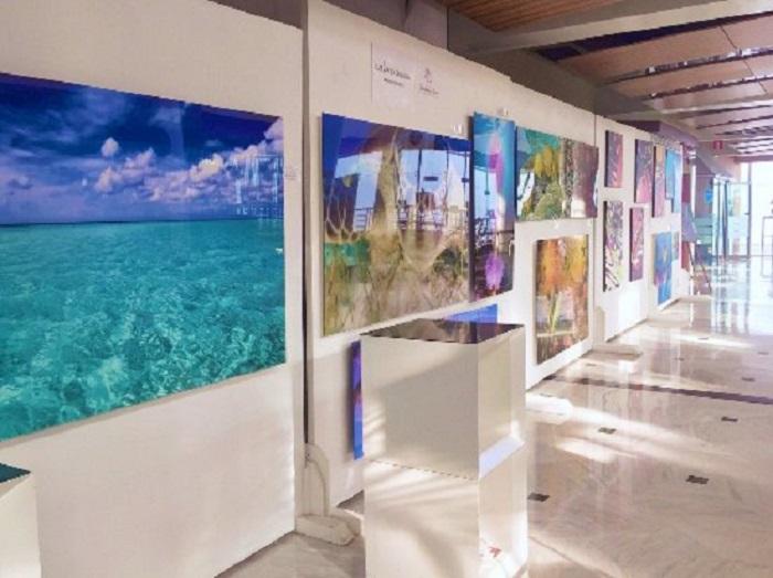 Galeria Balance Cancún: Visita